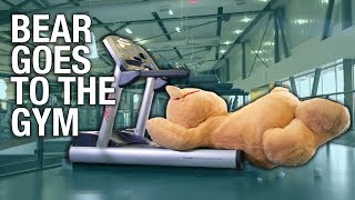 Giant Teddy Bear Goes To The Gym