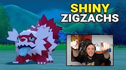 Shiny GALAR ZIGZACHS nach 464 Encountern Reaction! || Pokémon SCHWERT & SCHILD