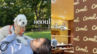 vlog. 서울숲 다녀오고 다이어트도 시작한 일상 보만…