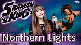 [퇴근버스]투니BUS - Northern Lights …