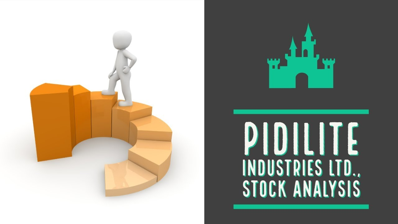 Pidilite Industries Ltd A Multibagger Stock Youtube
