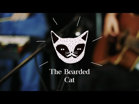 The Bearded Cat - Penumbra