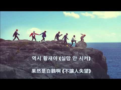 (中韓) BTS-相思鳥 (baebsae/뱁새)