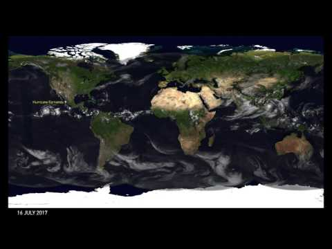 Global weather July 2017