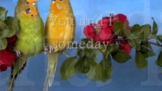 YOU AND I - John Davidson (Lyrics)