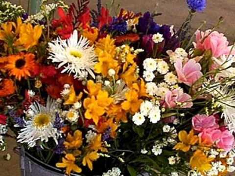 Клип Petula Clark - Petite Fleur