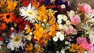Petula Clark- Petite Fleur.