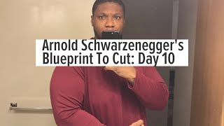 ARNOLD BLUEPRINT TO CUT | ARMS ROUTINE | 4AM FITNESS | FAT TO FAB