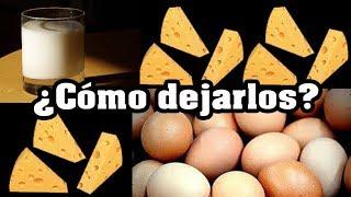 Tips para dejar quesos lcteos y huevos