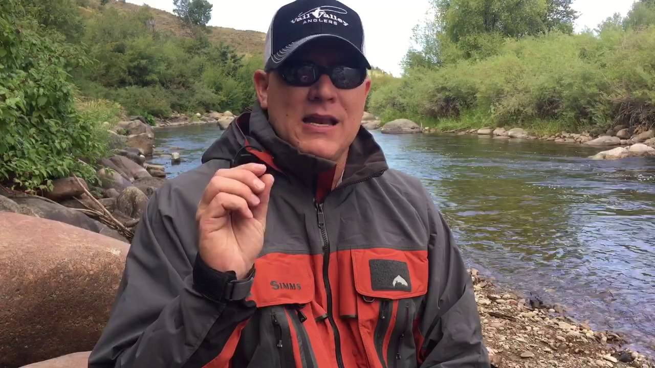 Colorado river fishing report 8 26 16 youtube for Colorado river fishing report