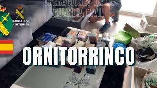 Operación Ornitorrinco. Desarticulada red dedicada al tráfico de drogas entre península y Canarias
