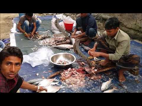 ᴴᴰ  Ridiculous Fish Cutting Section in Side of Road Karwan Bazar Fish Market | Part 02 HD 2017