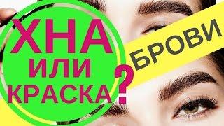 Секреты бровиста : Хна или краска?