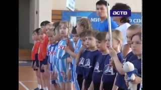 Японский мини-волейбол