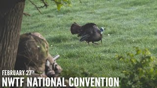 Turkey Hunting Highlights - NWTF National Convention | Spring Thunder