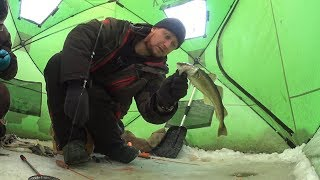 Рыбалка на крайнем севере Навага
