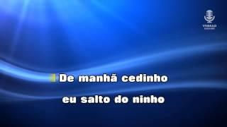 ♫ Karaoke PICA DO 7 - António Zambujo