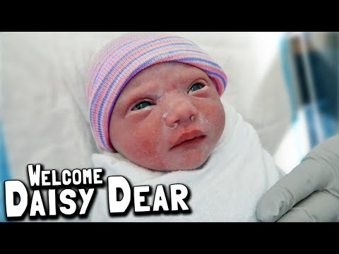Welcome Daisy Dear To The 2 In A Zoo Family! // New Baby Girl Birth Vlog 2019