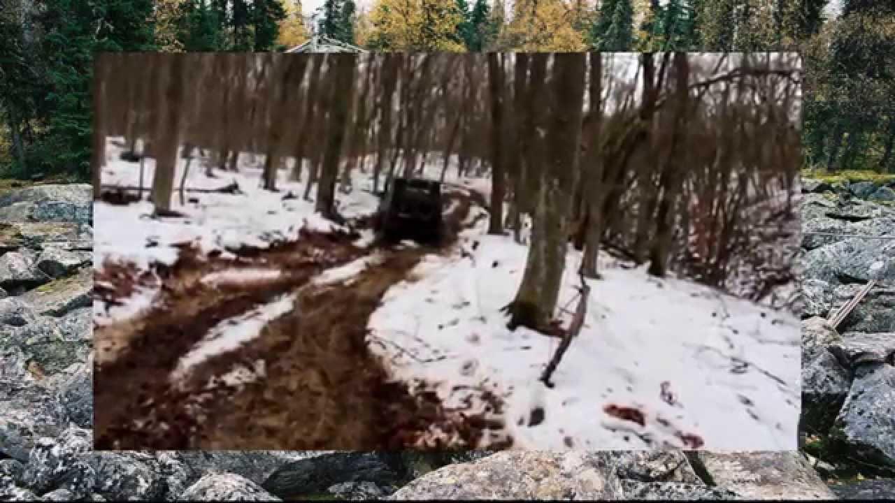 #400. УАЗ против иномарок на бездорожье в лесу