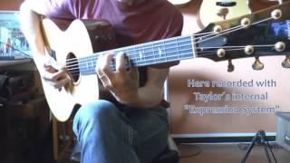 Taylor 516e-FLTD test