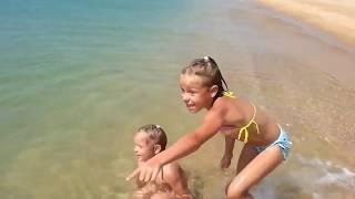 Дельфинчик. Выплыл на детей. Ловим.