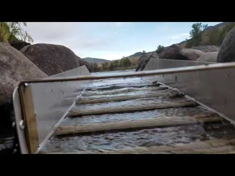 Gold Prospecting/Mining with T&P. Picker Gold