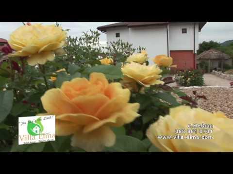 Kashta za gosti Villa Elma film short version