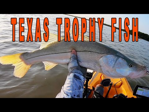 TEXAS TROPHY GIANT In Paradise | Texas Fishing Travels