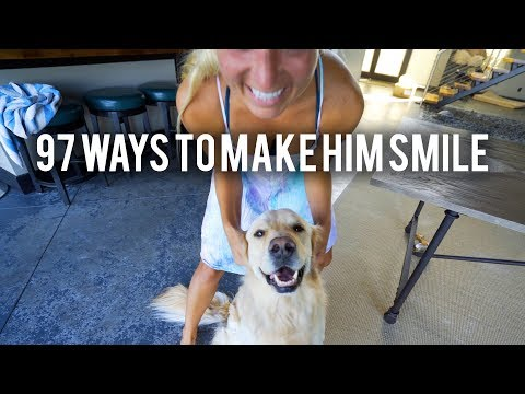 97 Ways to Make a Dog Smile (Super Cooper Sunday #163)