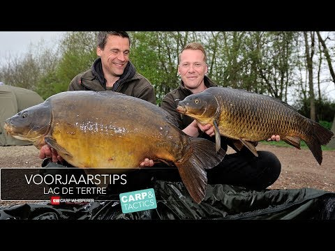 Zig vissen op karper Lac de Tertre, Carp & Tactics part 2