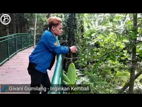 Inginkan Kembali - Givani Gumilang (Video Cover)
