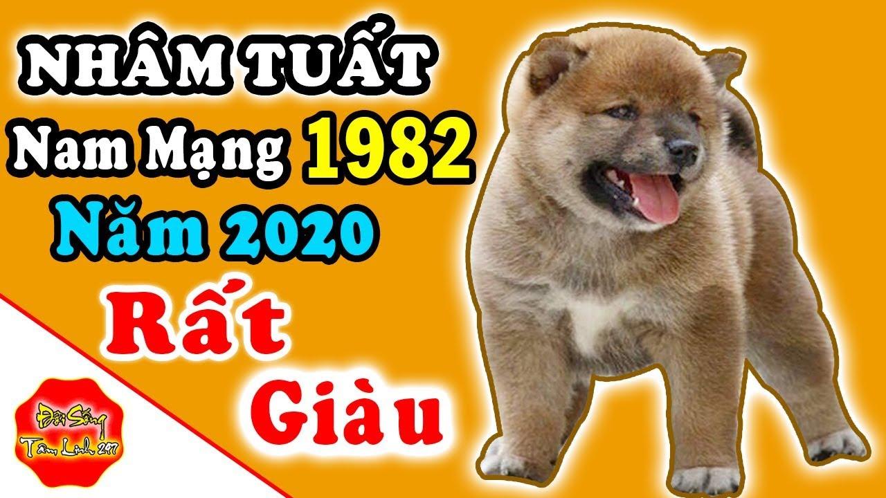 Tử Vi Nhâm Tuất Nam Mạng Sinh 1982 Năm 2020, May Mắn Thành Công, Rất Giàu Sang