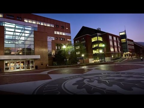 University of Connecticut - 5 Things I Wish I Had Known About Before Attending
