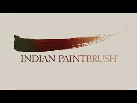 INDIAN PAINTBRUSH LOGO