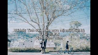 [Pinyin -Vietsub] Biệt khúc chờ nhau Tik Tok - 情深深雨濛濛 cover