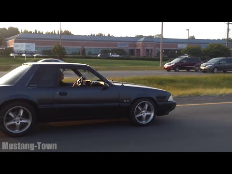 Nasty Notchback - Foxbody 5.0 Mustang LX Coupe