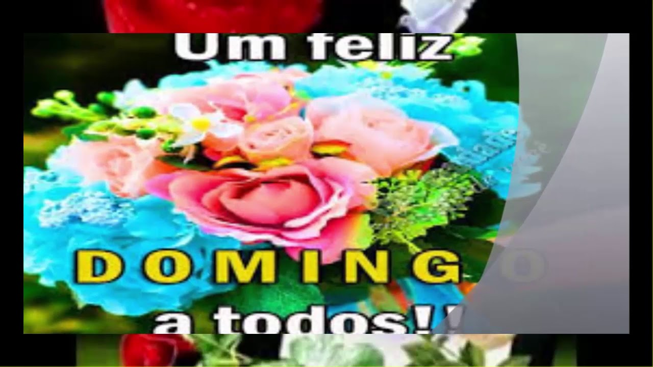 BOA TARDE DE DOMINGO, AMIGAS E AMIGOS UMA MARAVILHOSA