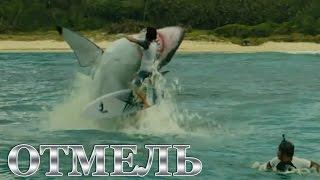Отмель [2016] Русский Трейлер - Кто сказал, что Акулы не опасны ?!