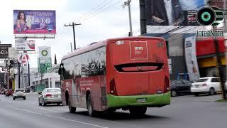 DIPUTADOS EXHORTAN AUMENTO DE AUTO TRANSPORTE PUBLICO
