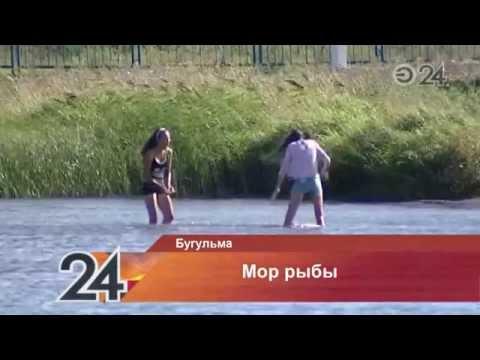 рыбалка на карабашском водохранилище
