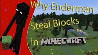 Why Enderman Steal Blocks