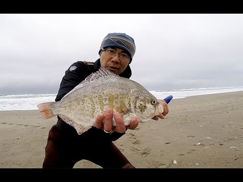 9/2 - Subscriber Get Together Surf Fishing - Newport Oregon