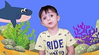 Акуленок ПЕСНЯ на русском языке Baby Shark SONG KIDS COLLECTION Песня про АКУЛУ Baby Shark Dance
