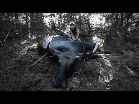 Manitoba Monster Moose Hunt