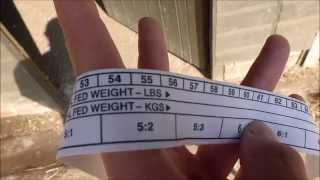 How to ....... Use a Weigh Tape!
