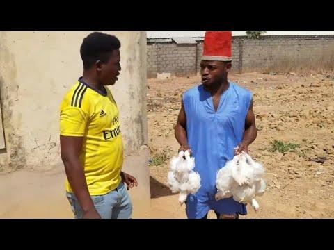 Download Jahilinmalami mesaida kaji  Brollers🤣🤣🤣(shikasuwanci hakuri yakeso)