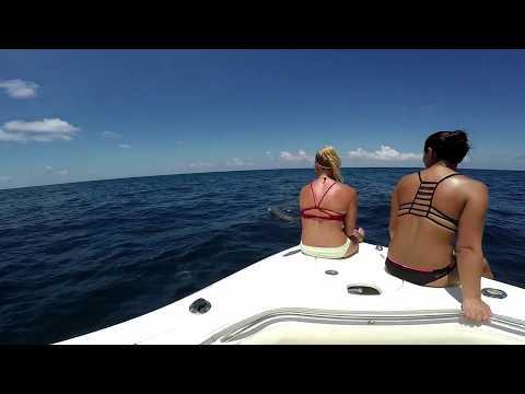 Texas Warsaw Grouper & Deep Drop Offshore Fishing Freeport / Surfside 2017
