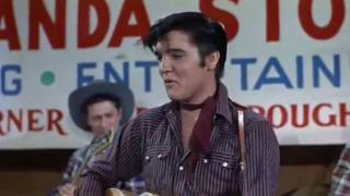 Watch Elvis Presley Hot Dog video