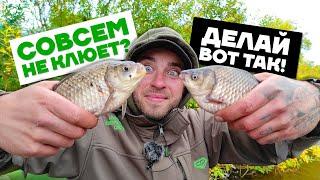 Ловля КАРАСЯ на ФИДЕР осенью ЧТО ДЕЛАТЬ и КАК ДЕЛАТЬ когда совсем НЕ КЛЮЕТ Рыбалка на фидер 2021