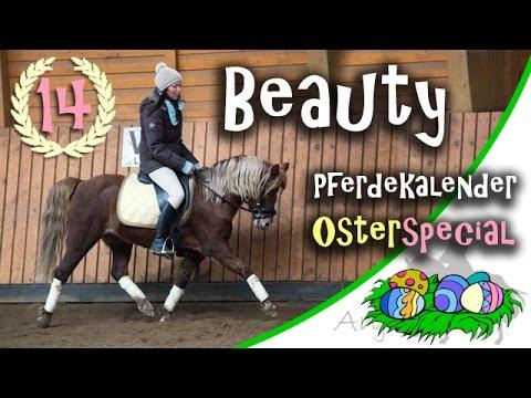 Das ist Beauty - Auslosung der Gewinner - Finale Pferdekalender Folge 14
